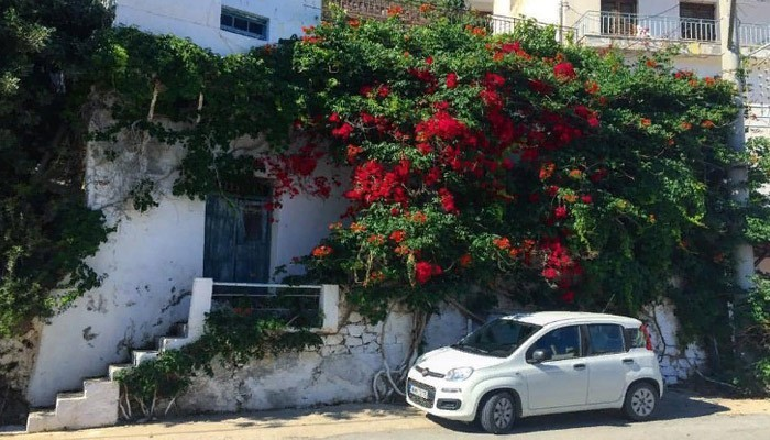 Цветущие улочки поселенияАгия Галини на Крите