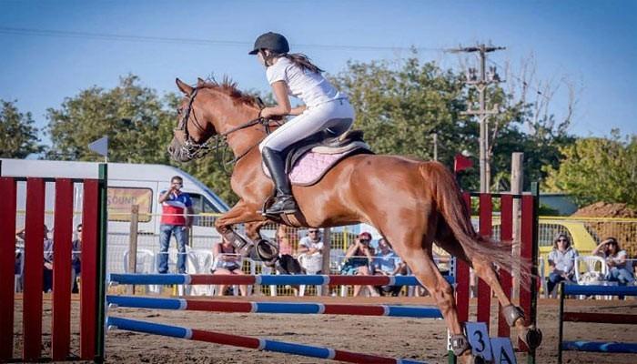 Фото школы верховой езды Horse Riding Center в Плакиасе на Крите
