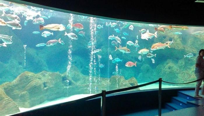 аквариум крита